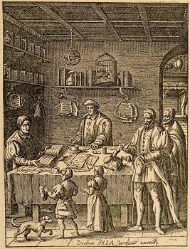 16th century lawyers